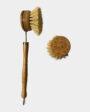 Less Than Bamboo Long Handle Dish Brush